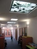 boudica_skylights-1